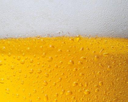 LE BIBITE - Birre