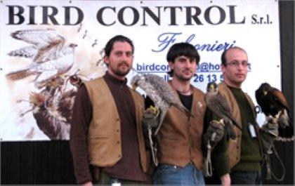 BIRD CONTROL Falconeria professionale