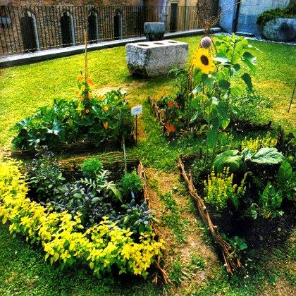 Progettiamo, realizziamo e curiamo giardini commestibili personalizzati.