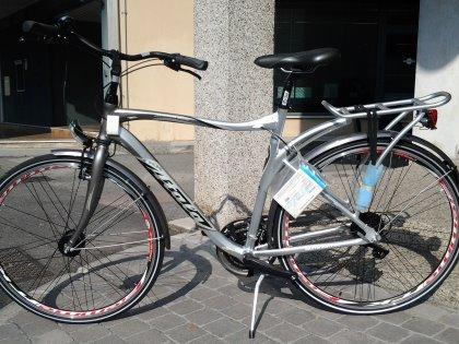 bici trekking argento/nero