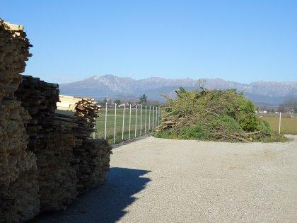 Forniamo la consulenza, il materiale e installiamo le caldaie per la produzione di biomasse a uso energetico