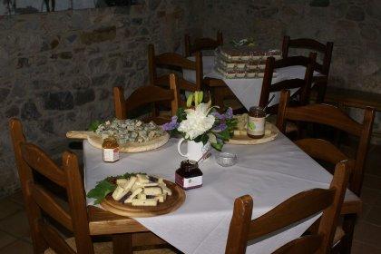 Azienda agricola Terra Amica: prodotti dalla terra alla tavola.