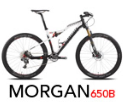 SCAPIN MORGAN 27,5