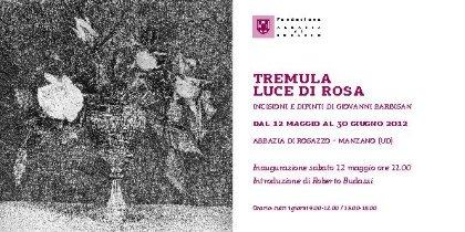 'Tremula luce di rosa. Incisioni e dipinti di Giovanni Barbisan' dal 12/05 al 30/06