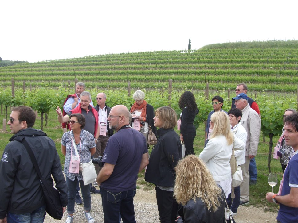 Cantine Aperte: aumentano le visite organizzate e cresce l'interesse verso i metodi di produzione
