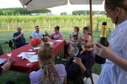 Movimento Turismo del Vino FVG - Udine