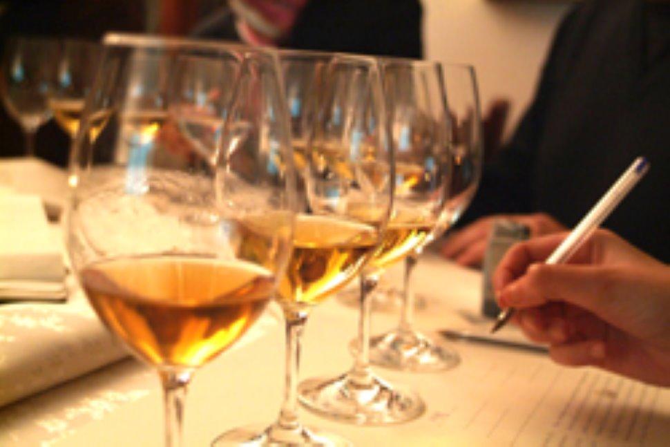 """Nuovo appuntamento """"Spirito di Vino in Cantina"""": corso di avvicinamento al vino dal 17 ottobre"""