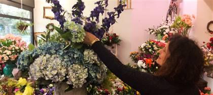 Siamo l'unico negozio in regione specializzato in fiori artificiali di alta qualità. Vieni a conoscerci
