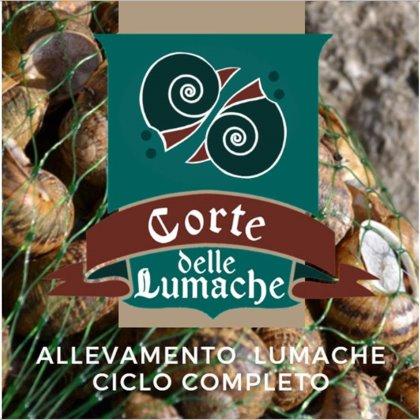 Corte delle Lumache | Elicicoltura - Udine