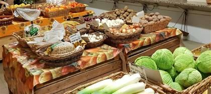 Nella nostra rivendita c'è proprio tutto quello di cui hai bisogno: frutta, verdura, formaggi e salumi di casa. Vieni a trovarci
