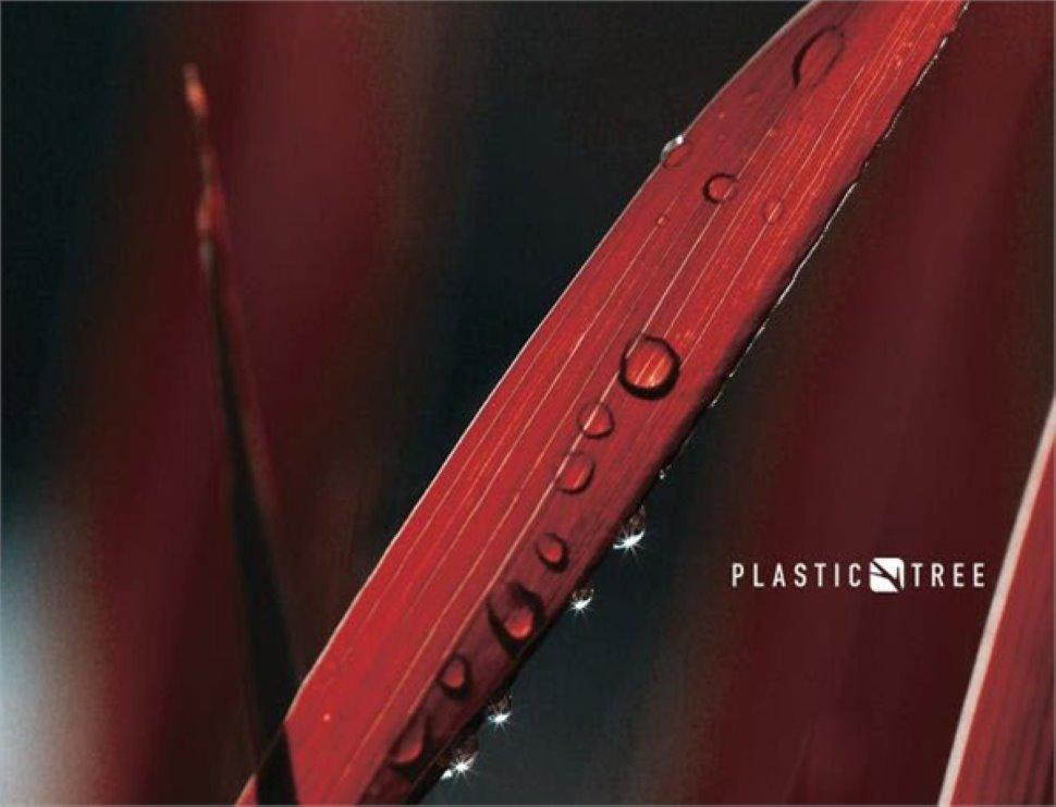 PLASTIC TREE - Cormons