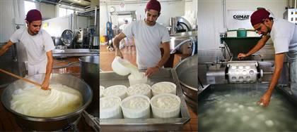La nostra casearia trasforma il latte dei nostri allevamenti Km0 per darti gustosi formaggi freschi e yogurt. Vieni a provarli