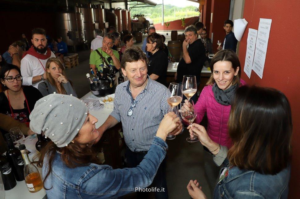 Movimento Turismo del Vino FVG