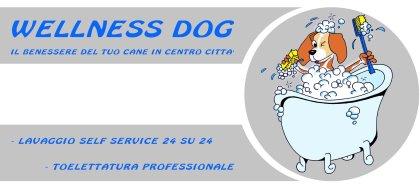 Wellness Dog, la toelettatura self service e professionale a Udine. Il vero centro benessere per il tuo cane.