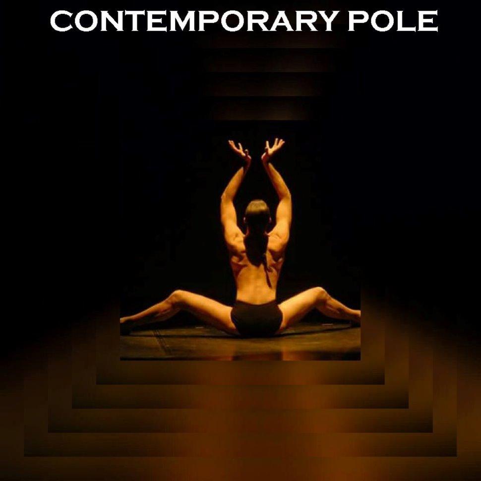 Contemporary Pole Dance presso Pole Dance Padova - Acrobatic Aerial Arts Academy Padova