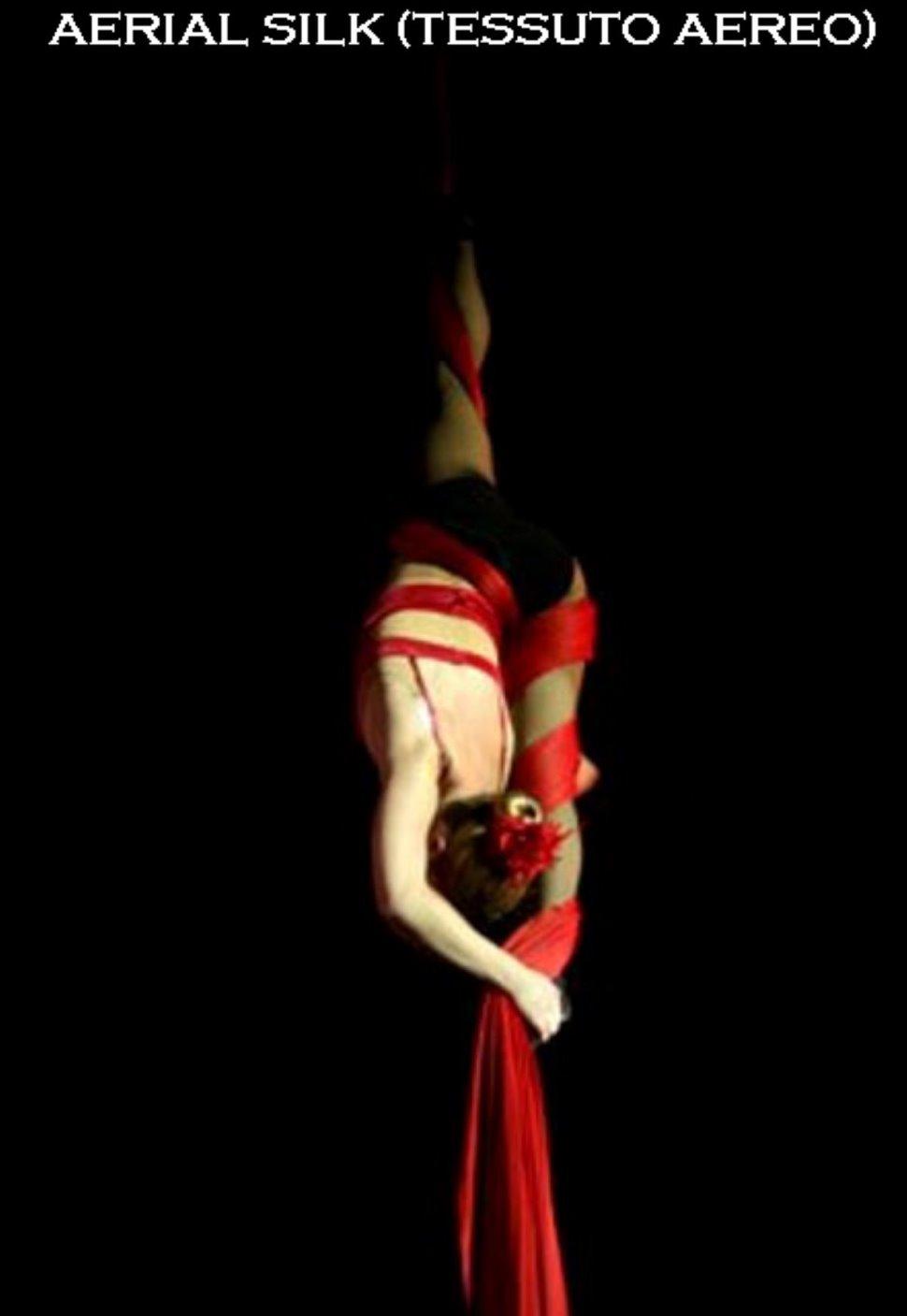 Aerial Silk (Tessuti Aerei) da Settembre presso Pole Dance Padova - Acrobatic Aerial Arts Academy Padova
