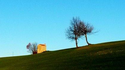 La fragola di Volpedo e le terre di Giuseppe Pellizza, escursione guidata con merenda a tema 27 MAGGIO 2018