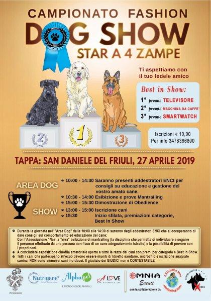 FASHION DOG SHOW 2019 SAN DANIELE SBOCCIA